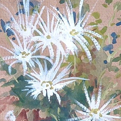 Detail of White Chrysanthemums by Steve Williamson