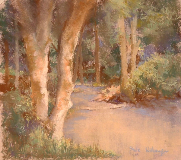 steve williamson painter pastel painting entitled the way through